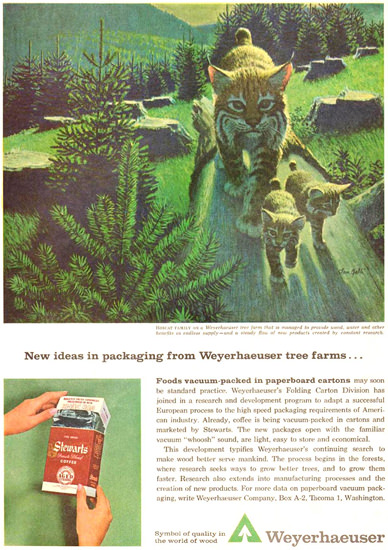 Weyerhaeuser Packaging Bobcat Family 1963   Vintage Ad and Cover Art 1891-1970