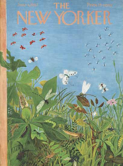 WomenArt Ilonka Karasz Cover The New Yorker 1962_06_09 Copyright | 69 Women Cover Artists and 826 Covers 1902-1970
